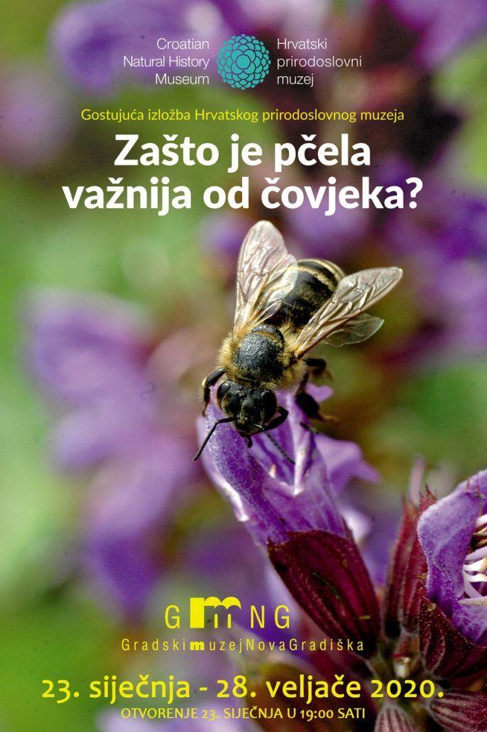 """IZLOŽBA """"Zašto je pčela važnija od  čovjeka"""""""
