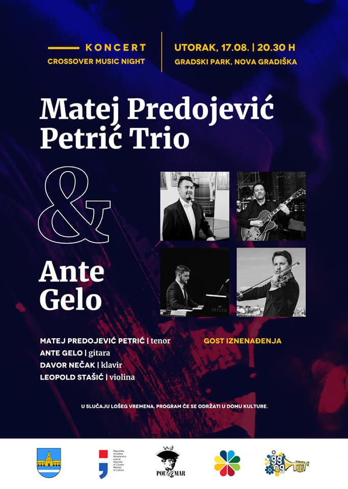 Koncert Mateja Predojevića Petrića